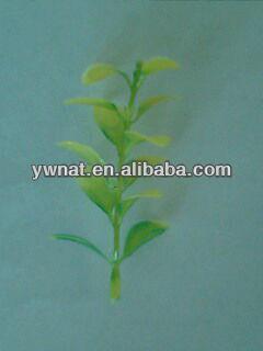 Plastic aquarium Background with artificial plant design
