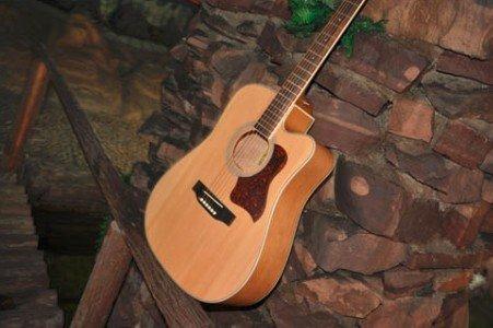 Catalpa Wood Guitars Catalpa Wood Acoustic High