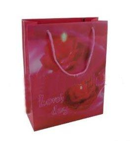 2013 Customized paper bag making machine price -PB80058