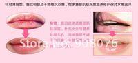 Ухаживающее средство для губ ! LipGstick 20pcs/Lot KH-A967