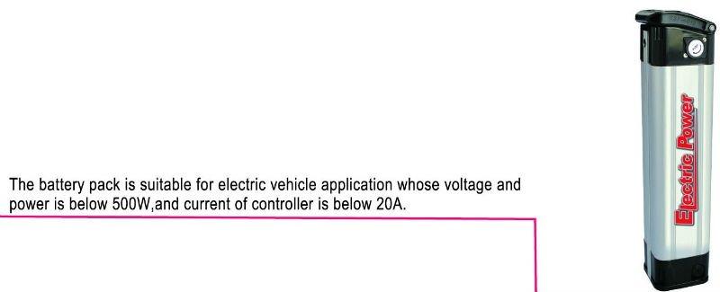 Lithium Polymer EV Battery