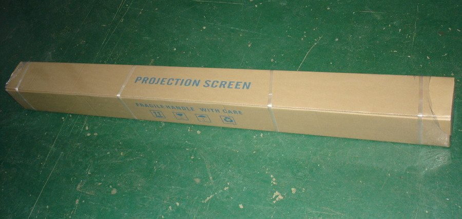 elunevision white manual projector screen 120 16 9