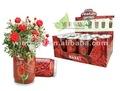 flores de lata, flores para lata, plantas de lata