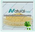 Natural grão de café verde extrato 50%, 60% fabricante