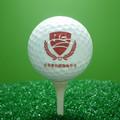 pieza 2 logotipo personalizado distancia pelota de golf