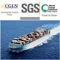 altamente competitivo mejor promotor de carga de mar