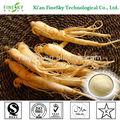 la asistencia sanitaria de productos de ginseng extracto de la raíz ginsenosides