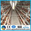 انخفاض سعر الدواجن قفص الدجاج طبقة البيض للبيع