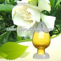 Natural de alimentos gardenia pigmento de color amarillo
