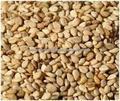 semillas de sésamo negro natural en venta