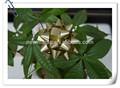 Baratos natal flor/flores artificiais de natal/flor artificial