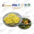 Instantánea de jugo de fruta en polvo( bluberry jugo en polvo)/de jugo de naranja en polvo