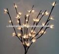 la luz hasta las ramas de la flor