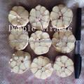 venta al por mayor de china proveedor de ajo de bajo precio