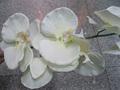 venta caliente baratos de flores de plástico
