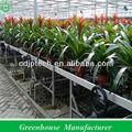 banco de efecto invernadero para las plantas