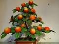 Frutas decorativas bonsai para a decoração