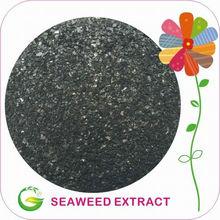 Soluble extracto de algas marinas / Alga en la Agricultura