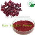 100% puro polvo de jamaica/secas roselle flor/flor color de rosa en polvo/secas roselle flor extracto
