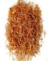 secos hongo cordycep