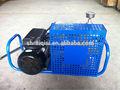 /eléctrico del motor de gasolina compresor de buceo con escafandra de buceo compresor con precio competitivo