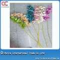 11 Jefes de seda Phalaenopsis Flor de la orquídea