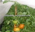Agricoles. fruits. housse en tissu, stabilisateur uv pp non tissé