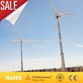 Viento de 30kw fabricante del generador del molino de viento
