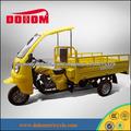 DOHOM triciclos motorizados para adultos