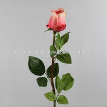 flor de la flor decorativa rosa