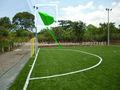 Hierba Fútbol Profesional/Hierba artificial de la FIFA (OG-04B)