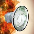 lámpara de inducción
