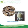 La fábrica del gmp/extracto de magnolia/corteza magnoliae officinalis extracto
