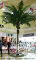Artificial de árboles de coco, los árboles de coco con frutas
