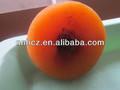 Fruta seca caqui seco/orgánica seca caqui procedentes de china