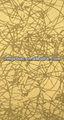 espelho de acabamento inox folha de ouro