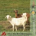 la fabricación de galvanizado de ovino y caprino cerca