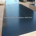 MR / MELAMINA / FENÓLICO pegamento resistente al agua madera contrachapada hecha frente película de Shandong