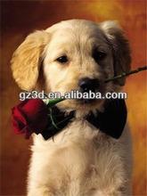 3d imágenes de perro