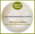 Natural Areca Palm Leaf Plates