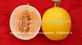 Hongyu f1 híbrido de alto contenido de azúcar de las semillas de melón dulce, semillas de melón híbrido