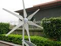 Envío gratis 300w jacinto generador de viento, lleno de energía, molino de viento, la turbina de viento, de alta calidad, ce, ro