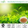 Extracto verde descafeinado del té, polvo verde del extracto del té, polyphenol del té