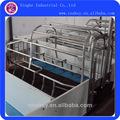 celas de parição para suínos