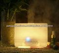 cerâmica Disc atomizador transdutor de ultra-som