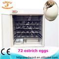 Holding 72 ovos de avestruz completa- automática de avestruz ovos para incubação máquina para venda