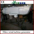 50kw generador de viento horizontal turbinas de viento de la venta