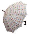 paraguas de la moto