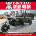 Triciclo motorizado adulto carga