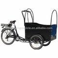 a família de carga triciclo elétrico para deficientes